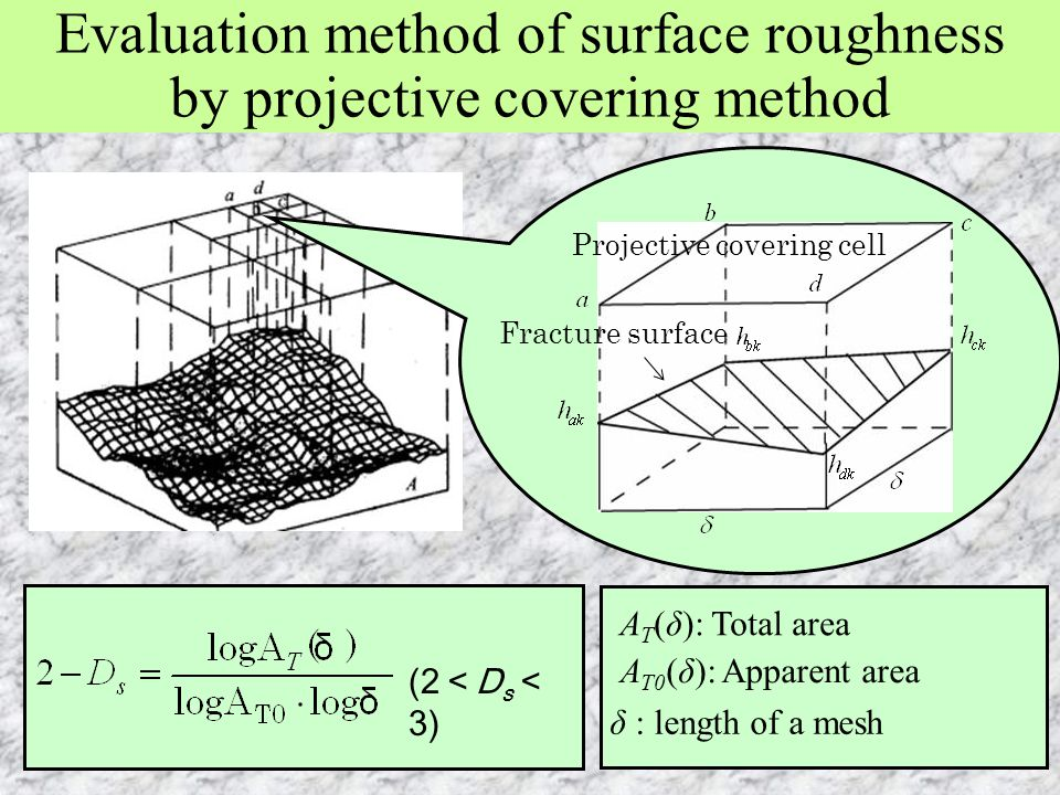 Evaluation method of surface roughness by projective covering method