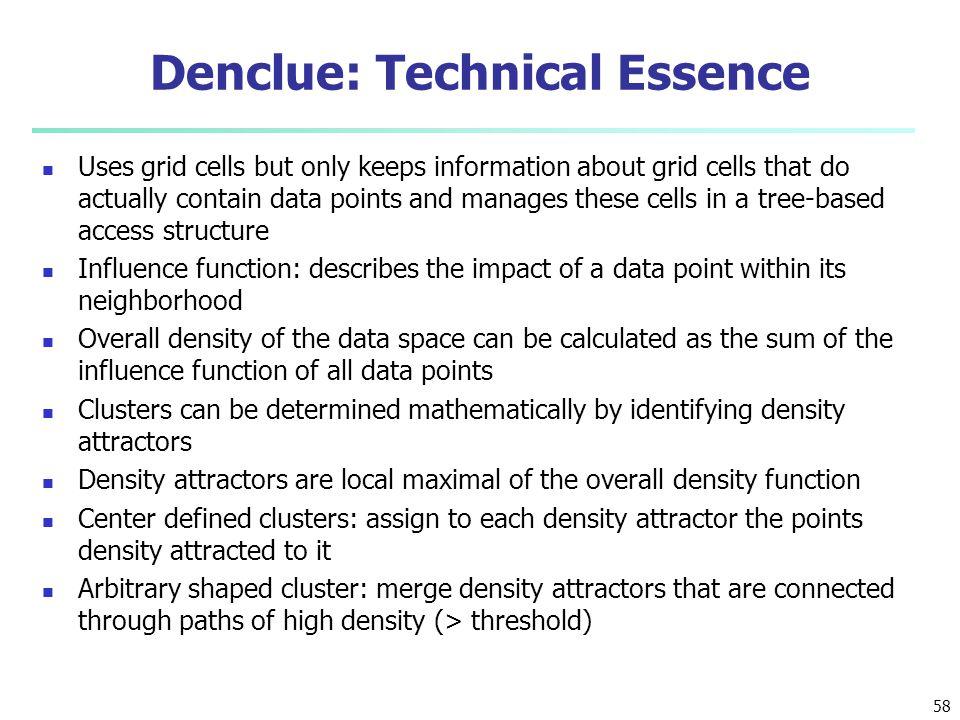 Denclue: Technical Essence