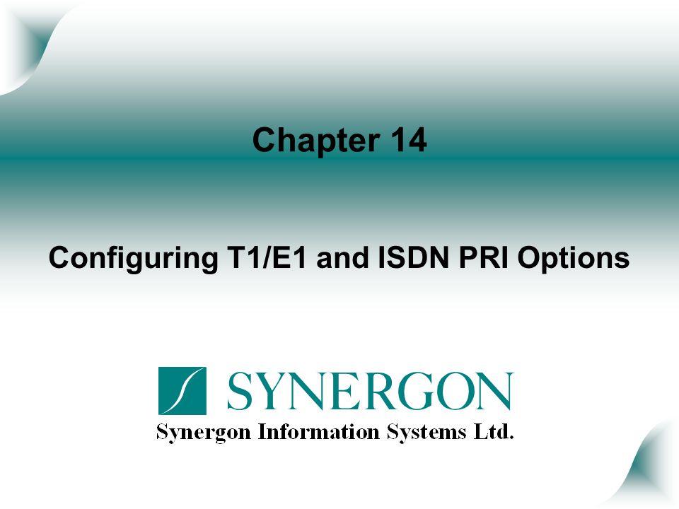 Configuring T1/E1 and ISDN PRI Options