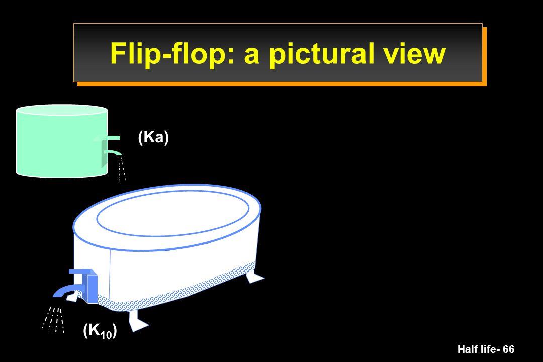 Flip-flop: a pictural view