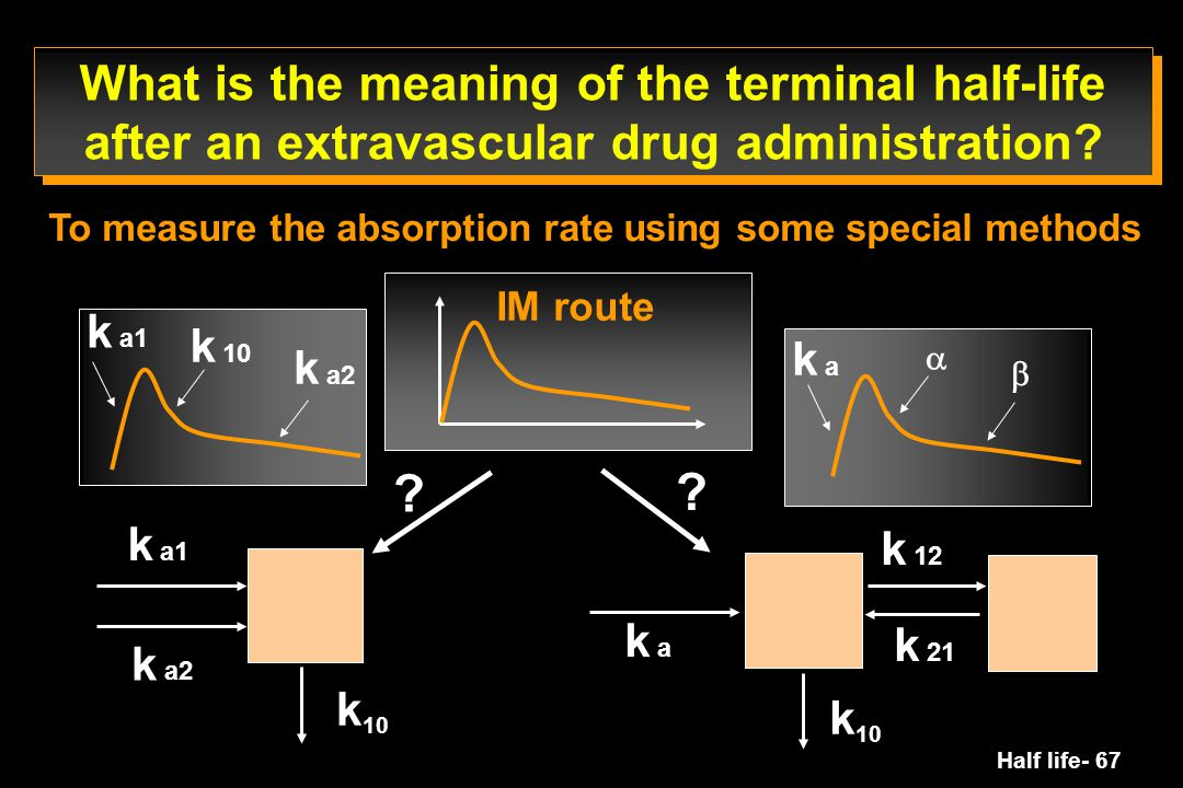 What is the meaning of the terminal half-life after an extravascular drug administration