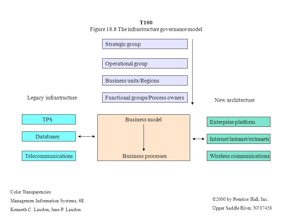T100 Figure 18.8 The infrastructure governance model