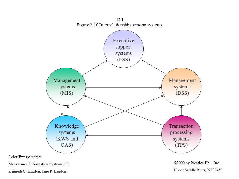 T11 Figure 2.10 Interrelationships among systems