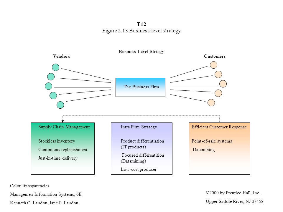 T12 Figure 2.13 Business-level strategy