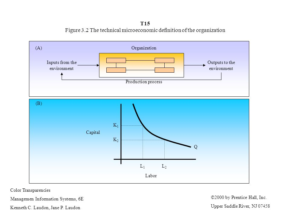 T15 Figure 3.2 The technical microeconomic definition of the organization