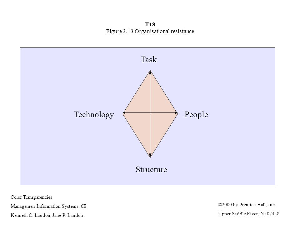 T18 Figure 3.13 Organisational resistance