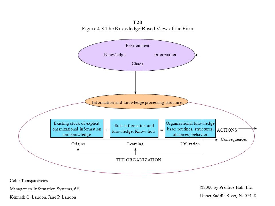 T20 Figure 4.3 The Knowledge-Based View of the Firm