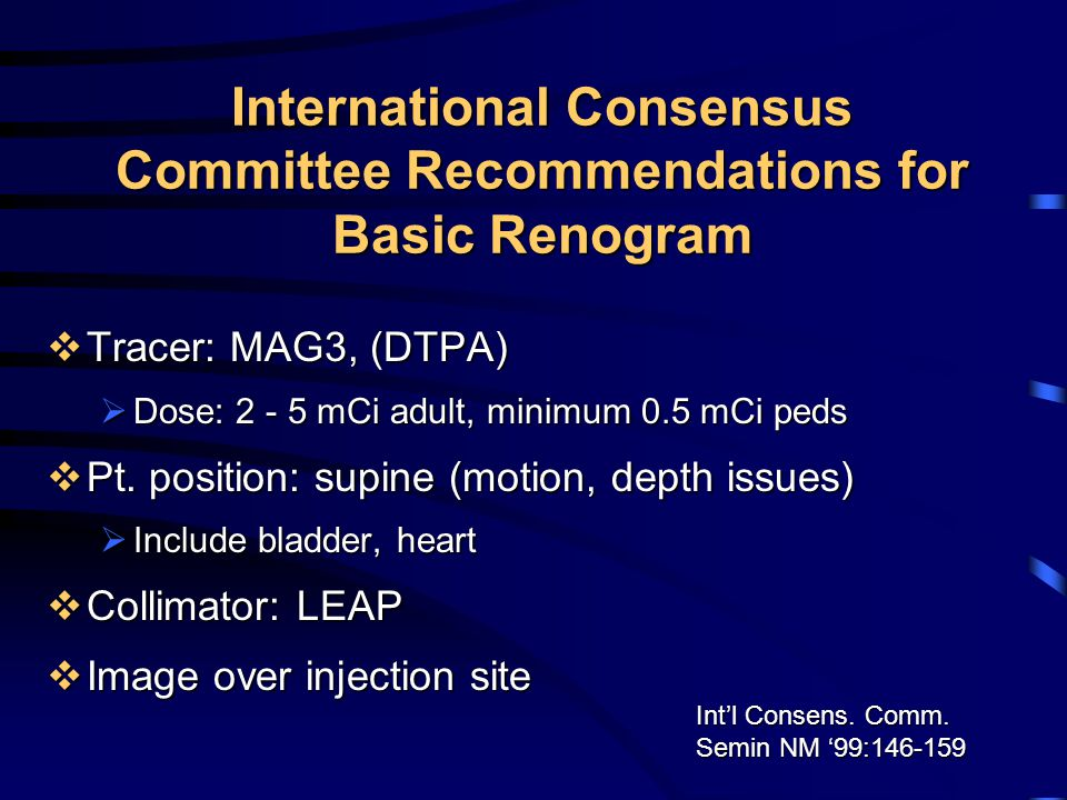International Consensus Committee Recommendations for Basic Renogram