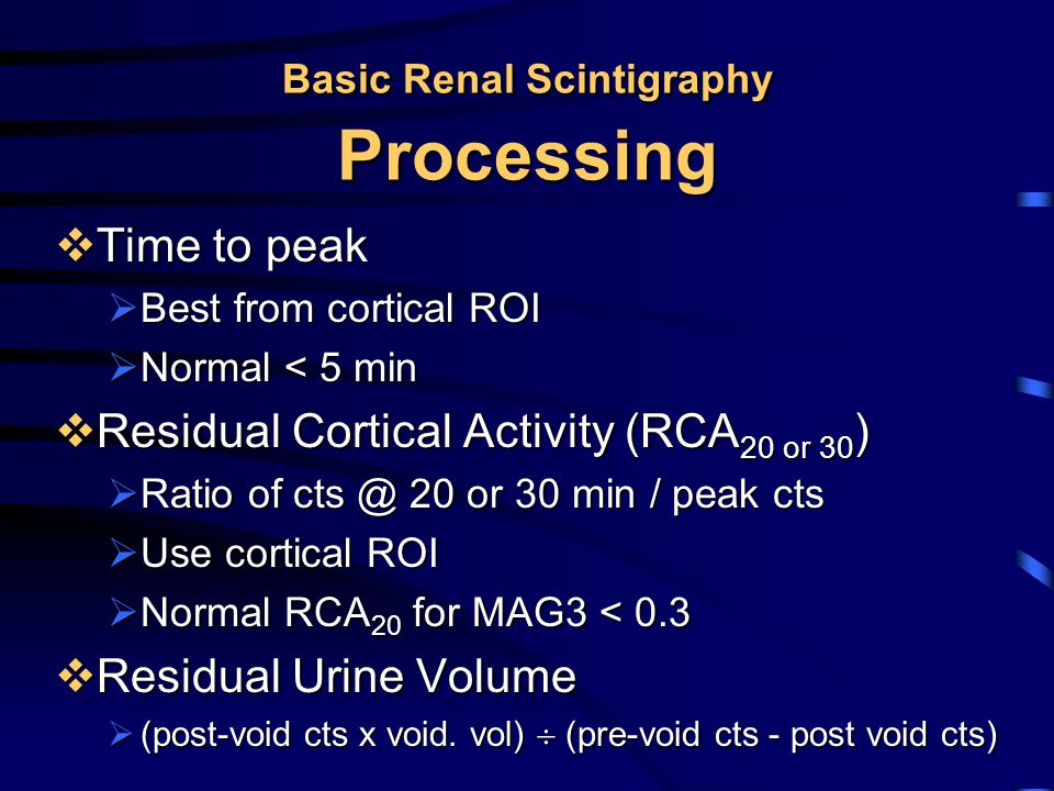Basic Renal Scintigraphy Processing