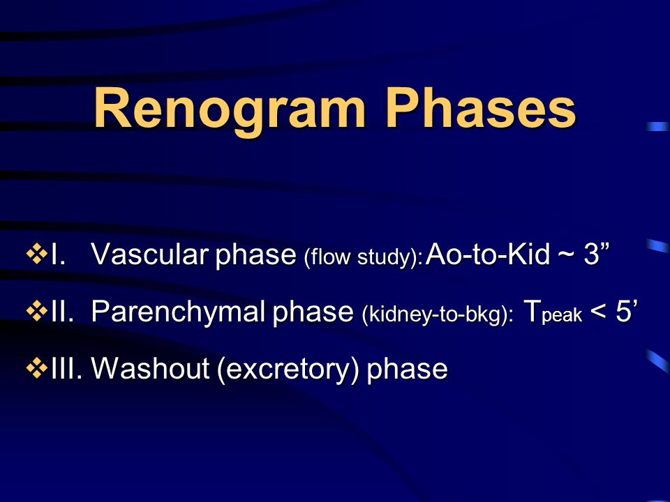 Renogram Phases I. Vascular phase (flow study): Ao-to-Kid ~ 3