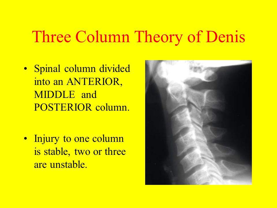 Three Column Theory of Denis
