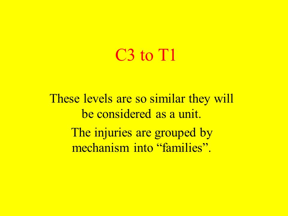 C3 to T1 These levels are so similar they will be considered as a unit.