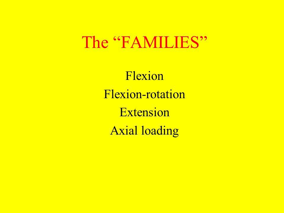 Flexion Flexion-rotation Extension Axial loading