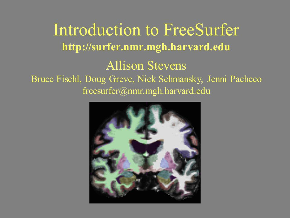 Introduction to FreeSurfer http://surfer.nmr.mgh.harvard.edu