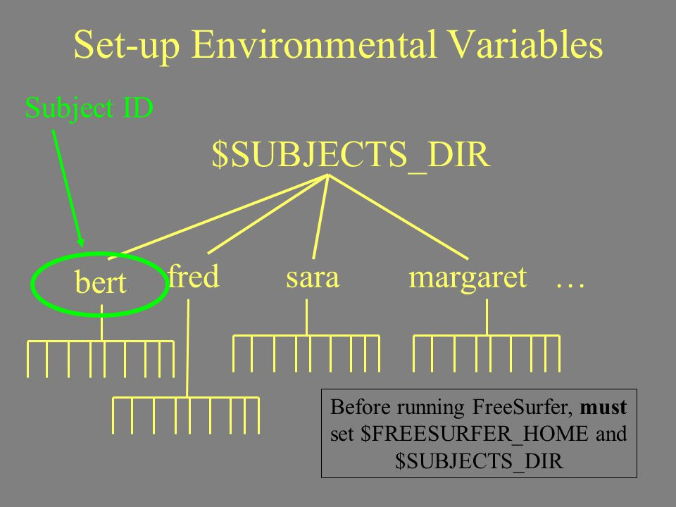 Set-up Environmental Variables