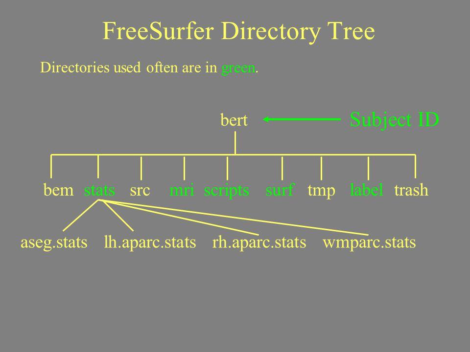 FreeSurfer Directory Tree