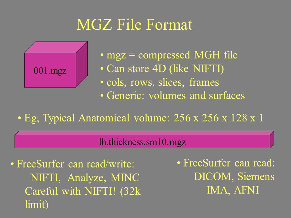 MGZ File Format mgz = compressed MGH file Can store 4D (like NIFTI)