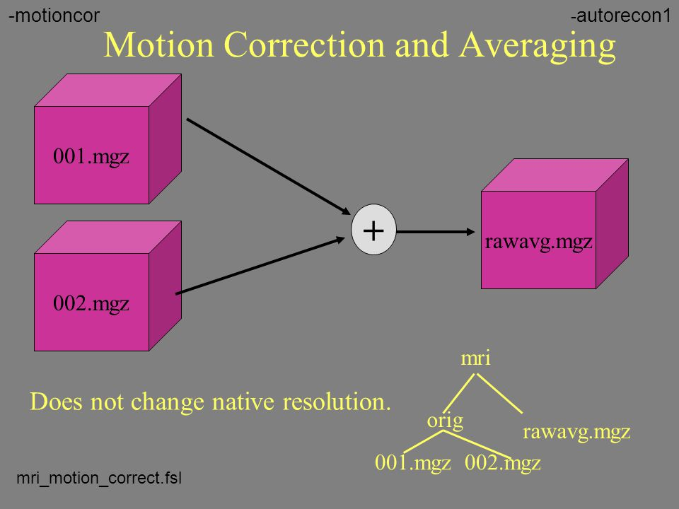 Motion Correction and Averaging