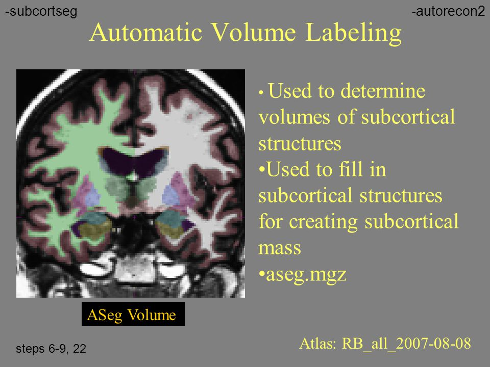 Automatic Volume Labeling