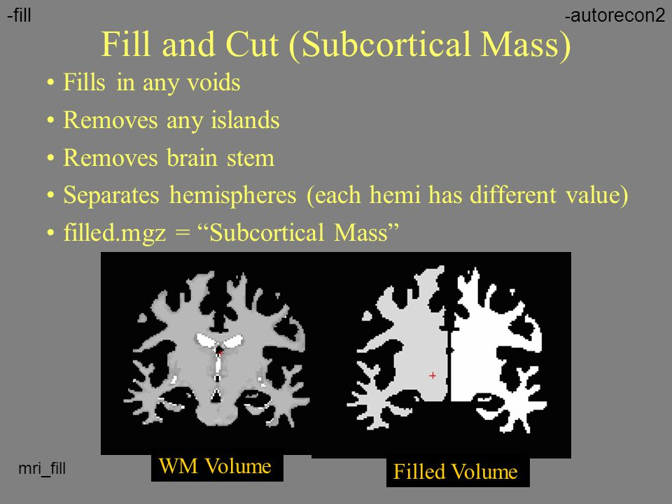 Fill and Cut (Subcortical Mass)