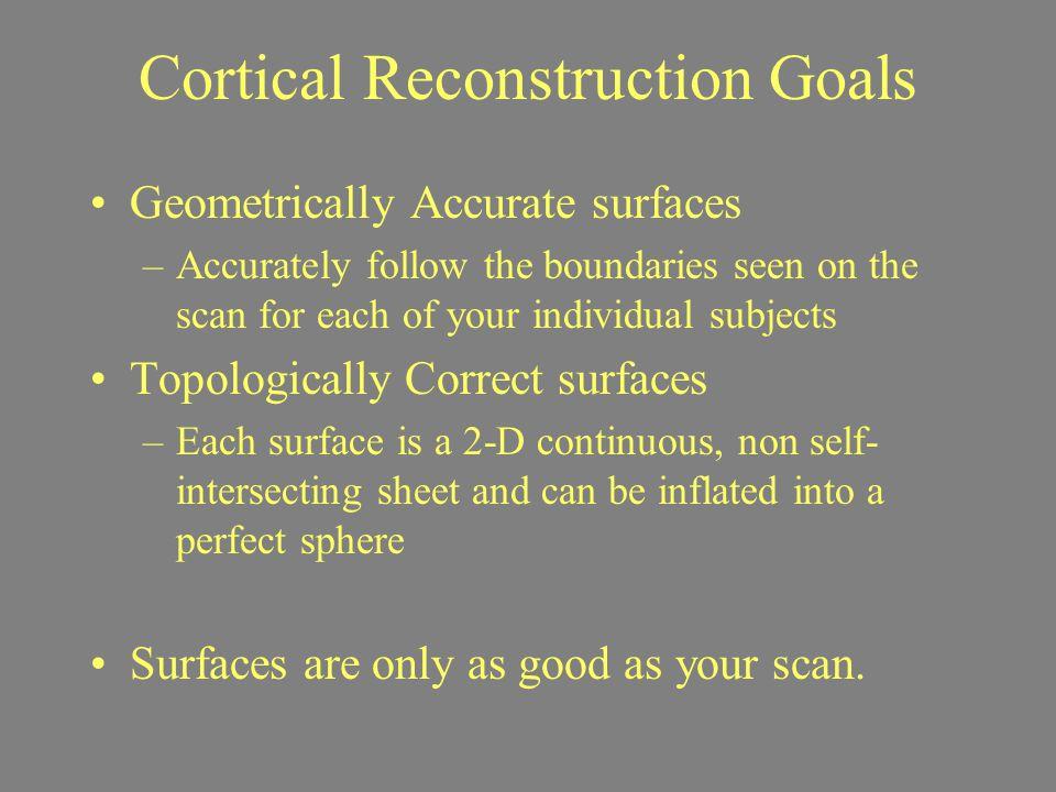Cortical Reconstruction Goals