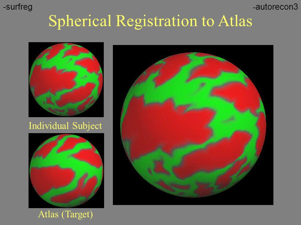 Spherical Registration to Atlas