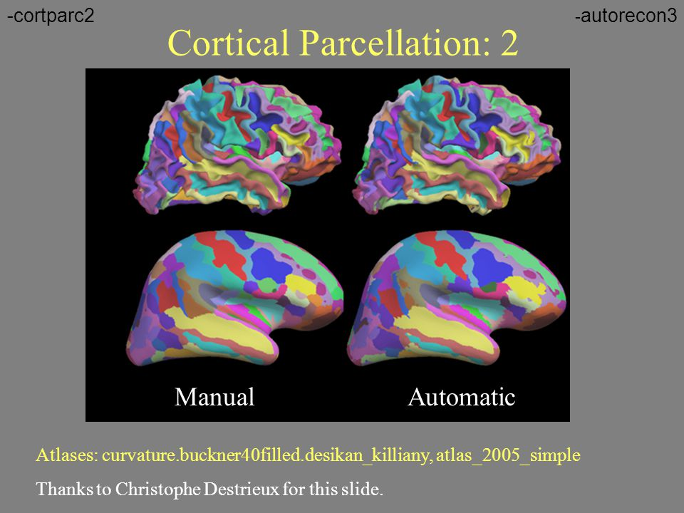 Cortical Parcellation: 2