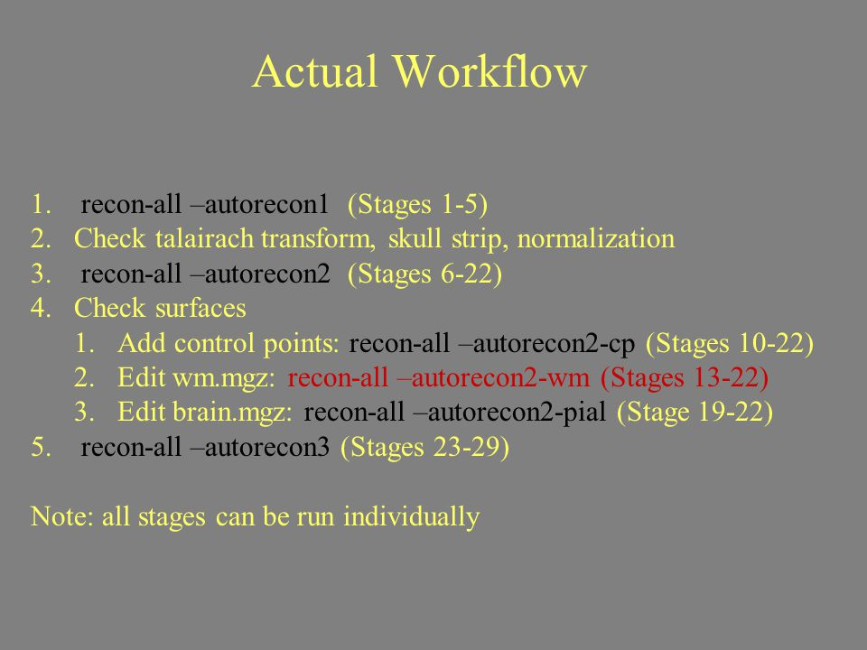 Actual Workflow recon-all –autorecon1 (Stages 1-5)