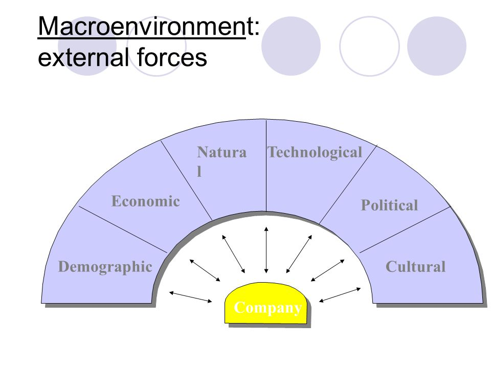 Macroenvironment: external forces