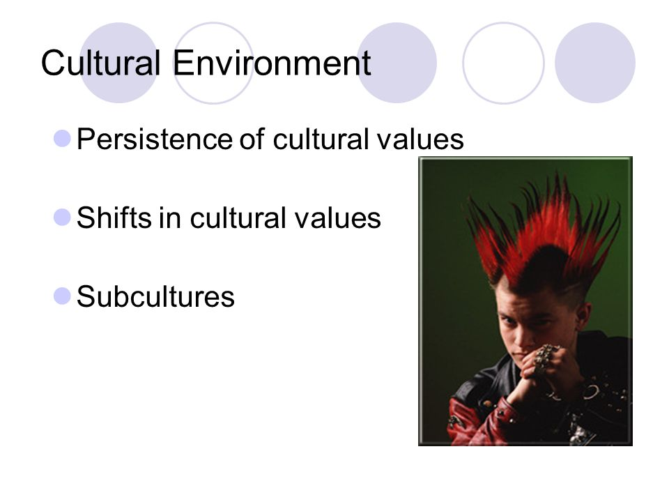 Cultural Environment Persistence of cultural values