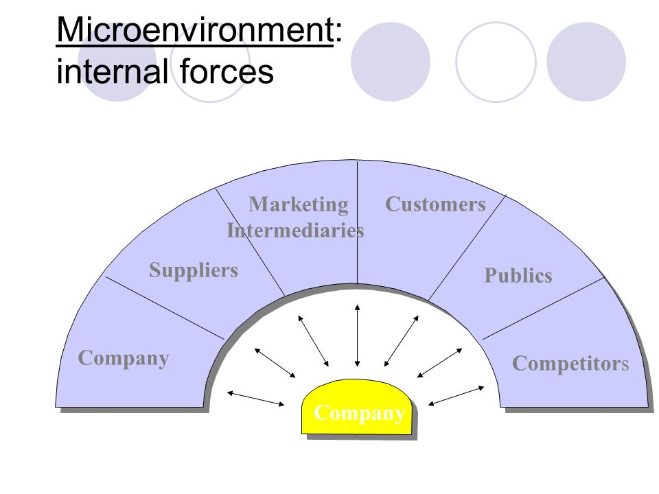 Microenvironment: internal forces