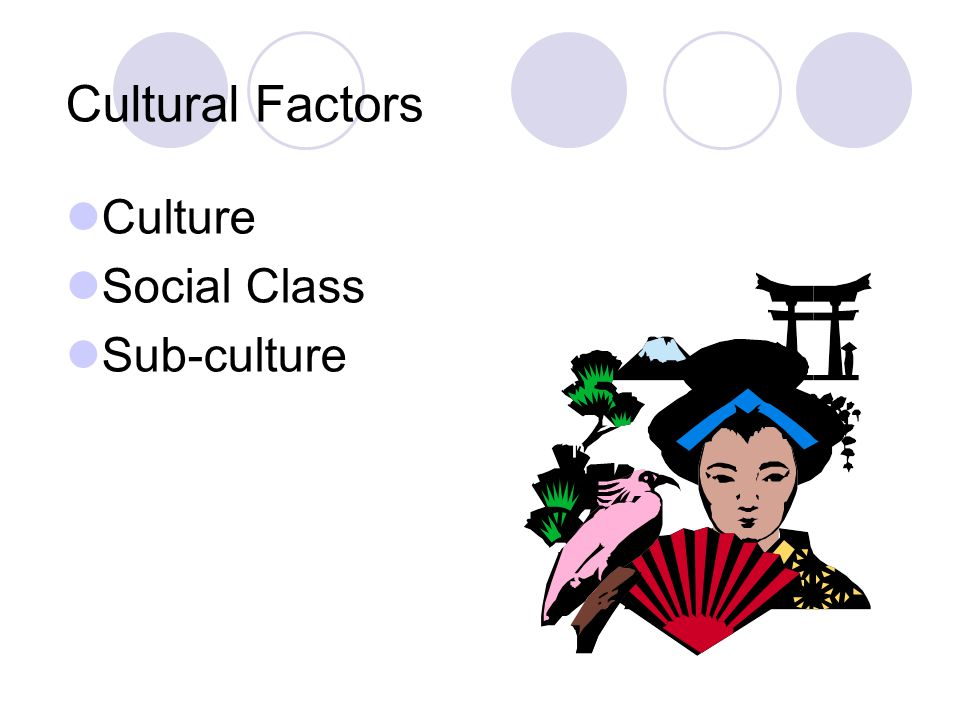 Cultural Factors Culture Social Class Sub-culture 7 7