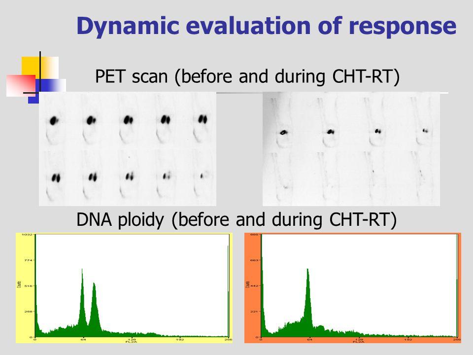 Dynamic evaluation of response