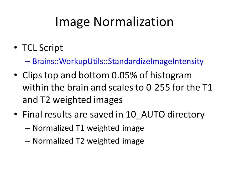 Image Normalization TCL Script