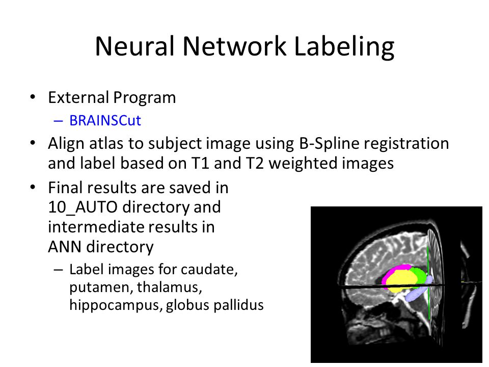Neural Network Labeling