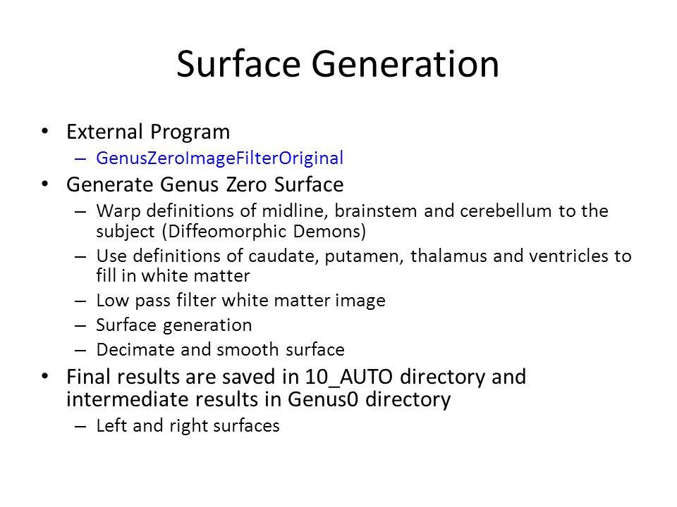 Surface Generation External Program Generate Genus Zero Surface