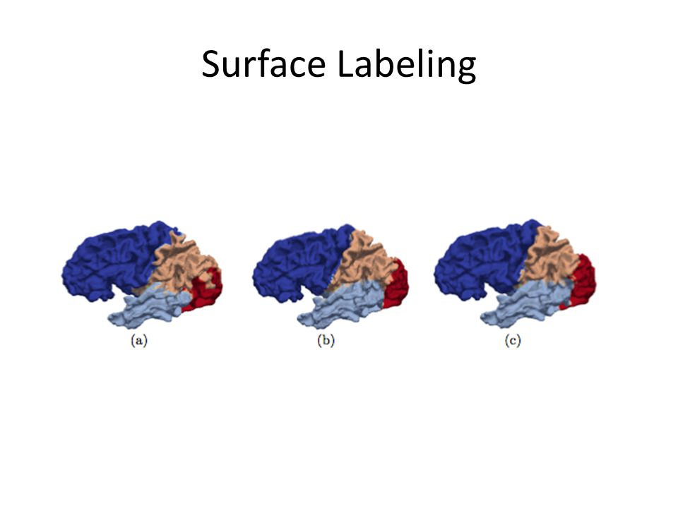 Surface Labeling