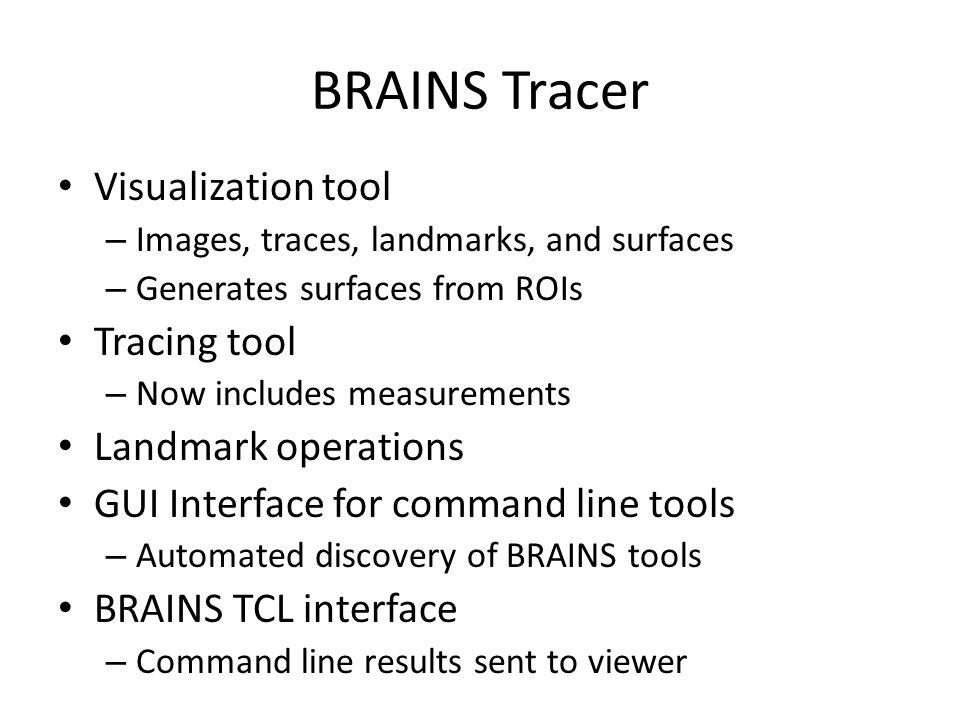 BRAINS Tracer Visualization tool Tracing tool Landmark operations