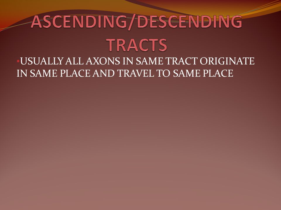 ASCENDING/DESCENDING TRACTS