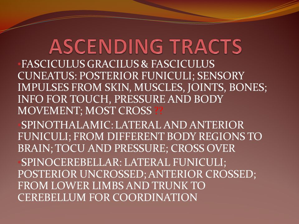 ASCENDING TRACTS