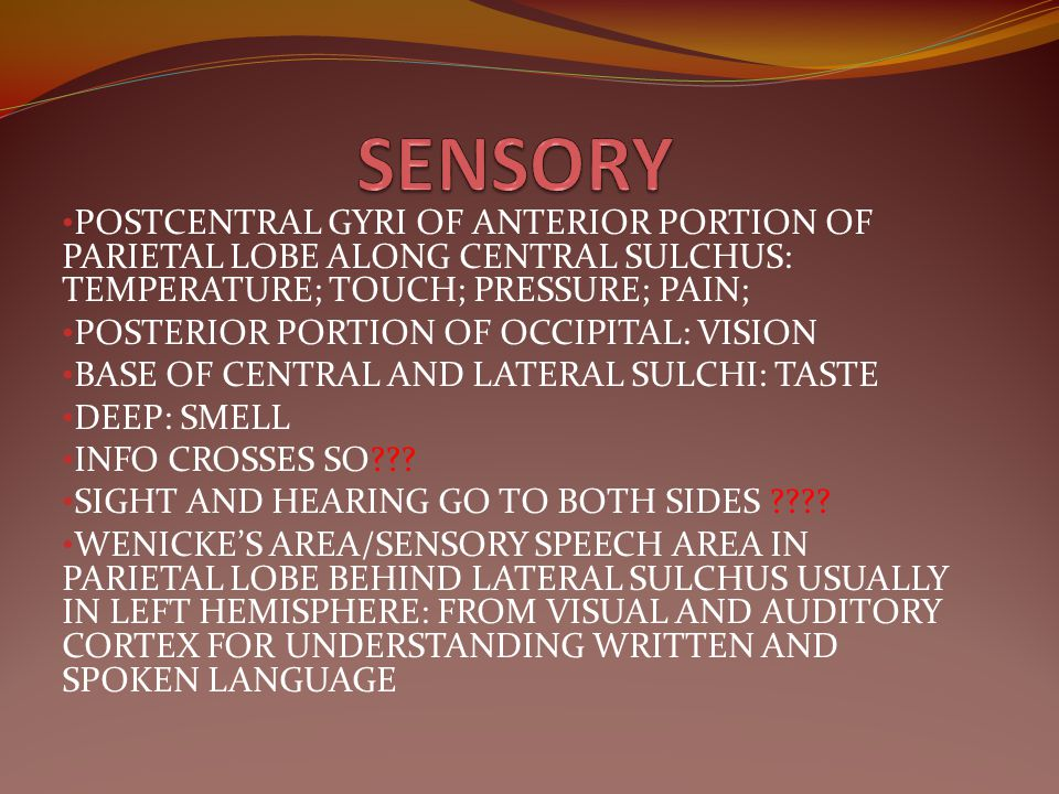 SENSORY POSTCENTRAL GYRI OF ANTERIOR PORTION OF PARIETAL LOBE ALONG CENTRAL SULCHUS: TEMPERATURE; TOUCH; PRESSURE; PAIN;