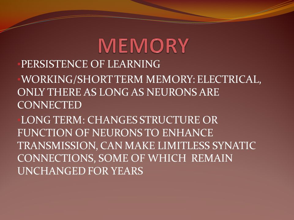 MEMORY PERSISTENCE OF LEARNING