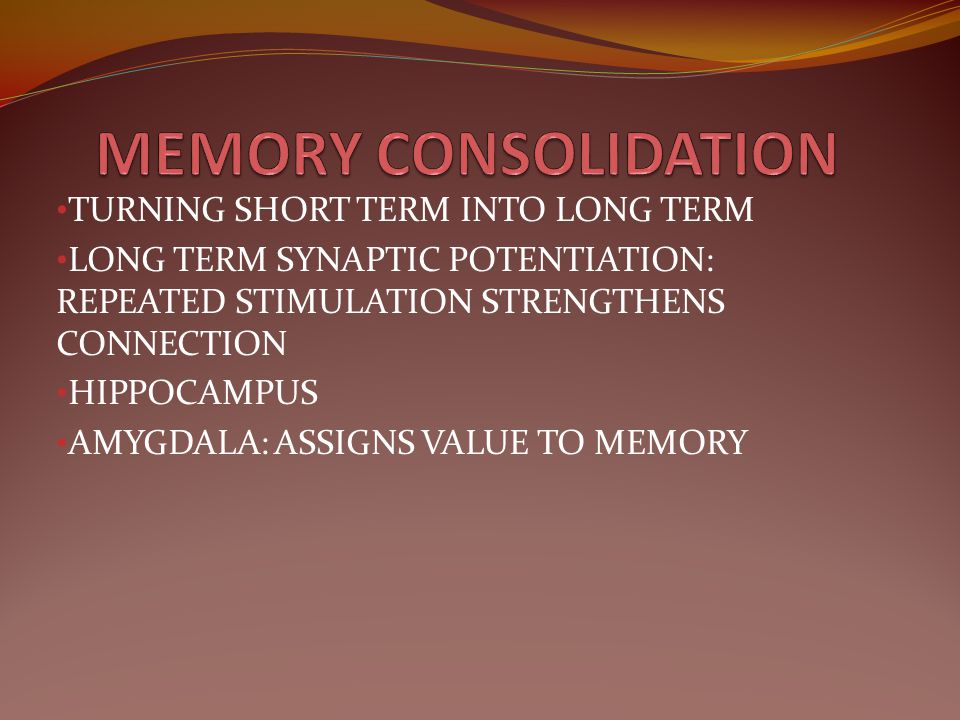 MEMORY CONSOLIDATION TURNING SHORT TERM INTO LONG TERM