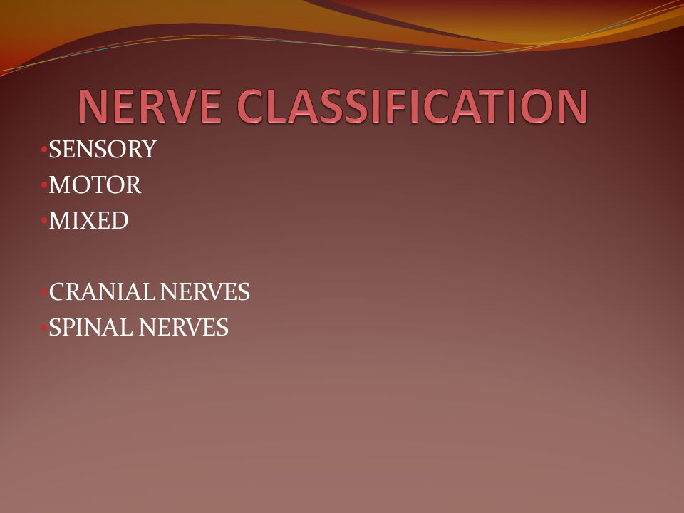 SENSORY MOTOR MIXED CRANIAL NERVES SPINAL NERVES