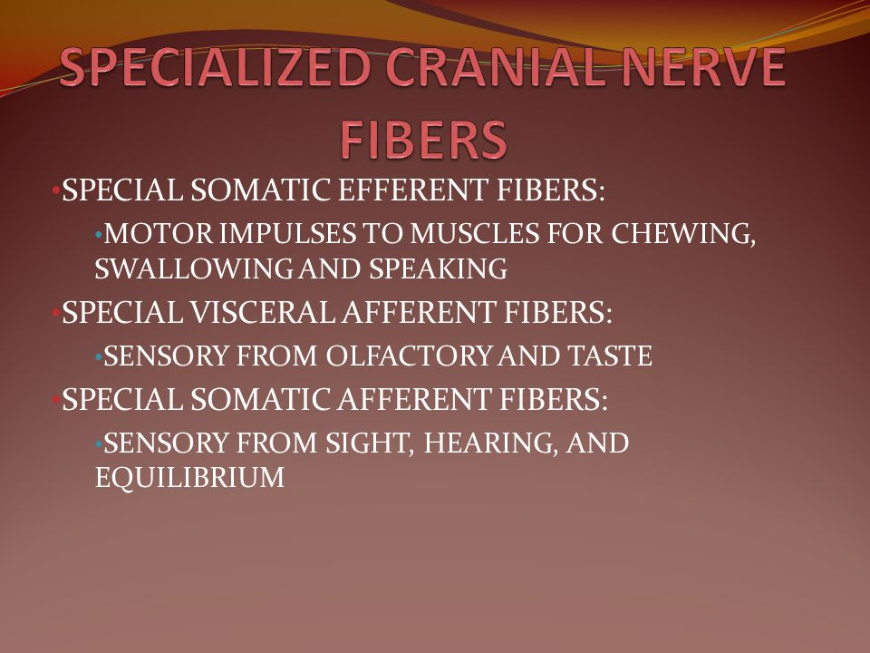 SPECIALIZED CRANIAL NERVE FIBERS