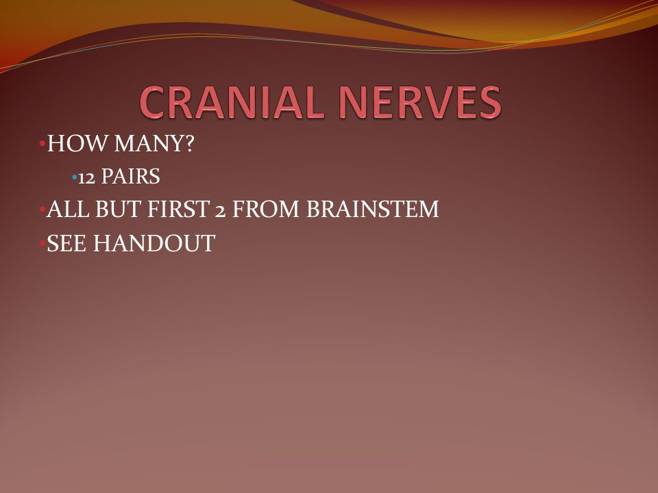 HOW MANY 12 PAIRS ALL BUT FIRST 2 FROM BRAINSTEM SEE HANDOUT