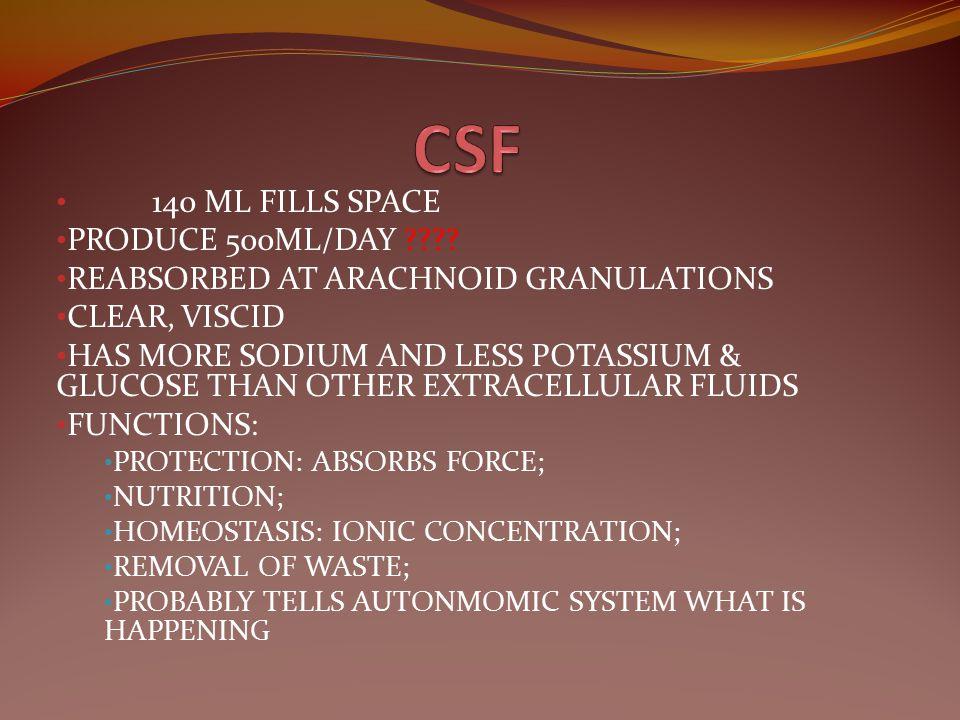 CSF 140 ML FILLS SPACE PRODUCE 500ML/DAY