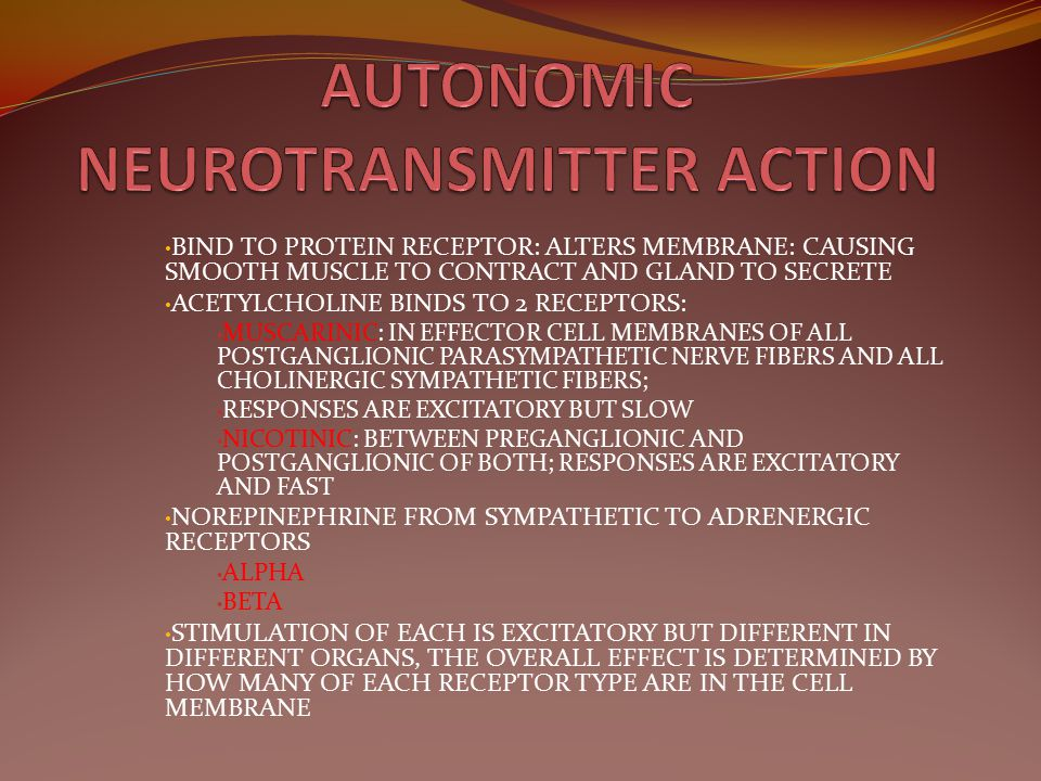AUTONOMIC NEUROTRANSMITTER ACTION