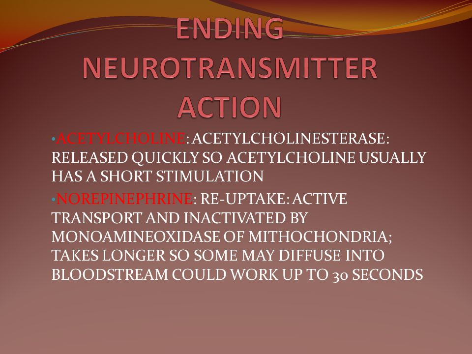 ENDING NEUROTRANSMITTER ACTION