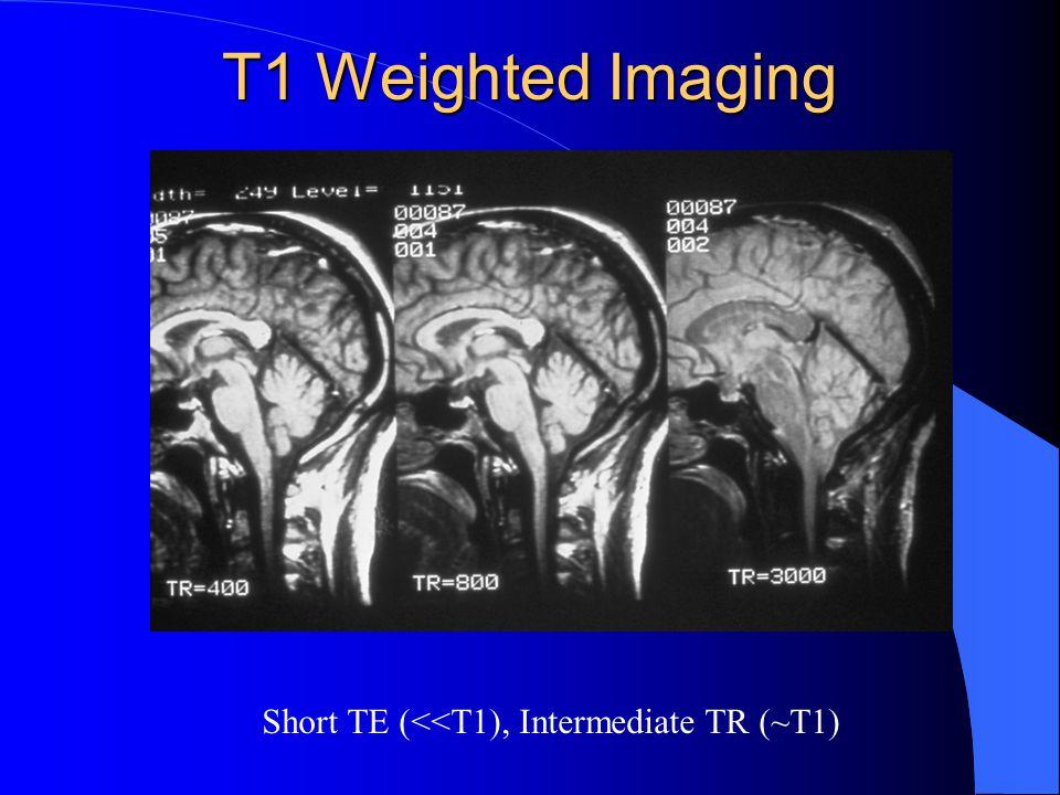 Short TE (<<T1), Intermediate TR (~T1)